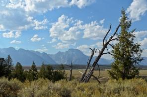 Grand Teton National Park - August, 2017