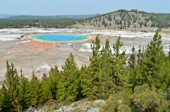 Grand Prismatic Spring (viewed from the eponymous lookout trail).