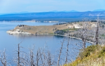 Yellowstone Lake: Lake Butte Overlook