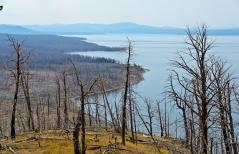 Yellowstone Lake: Lake Butte Overlook