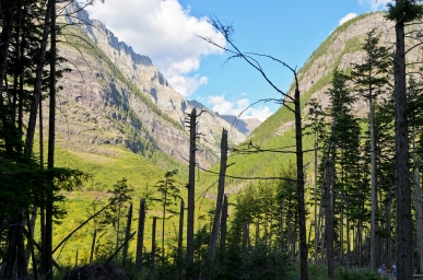 Avalanche Lake Trail