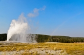 Old Faithful and a rainbow towering over the crowd in the distance.