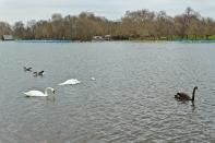 Hyde Park - London, England