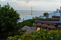 San Francisco: View from Telegraph Hill while descending the Fil