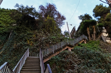 San Francisco: The Filbert Steps