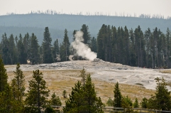 Old Faithful between eruptions.