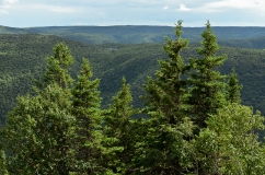 Franey Mountain in the Cape Breton Highlands, Nova Scotia, Canad