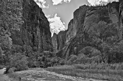 Zion - HDR